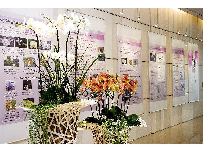 成大會館網路訂房限定 「成蘭之美體驗住房專案」享優惠