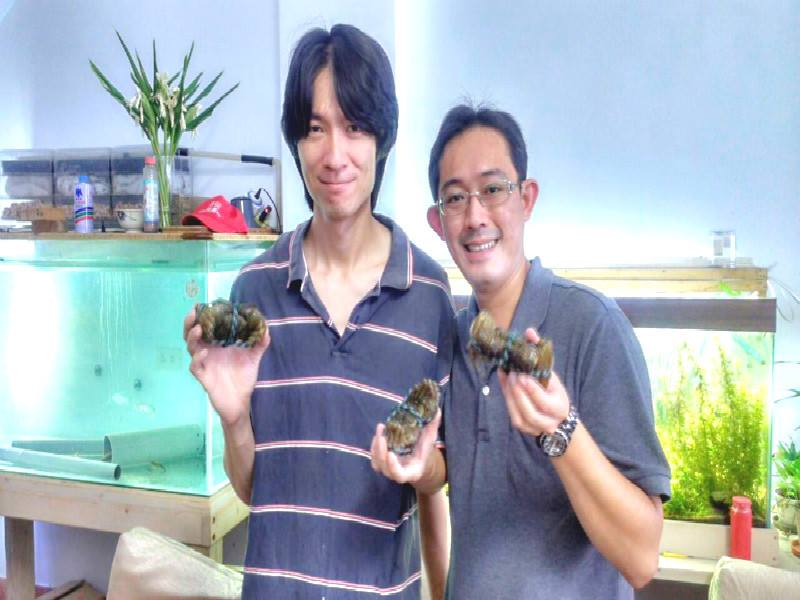 花蓮體驗大閘蟹生態活動  能吃又能做