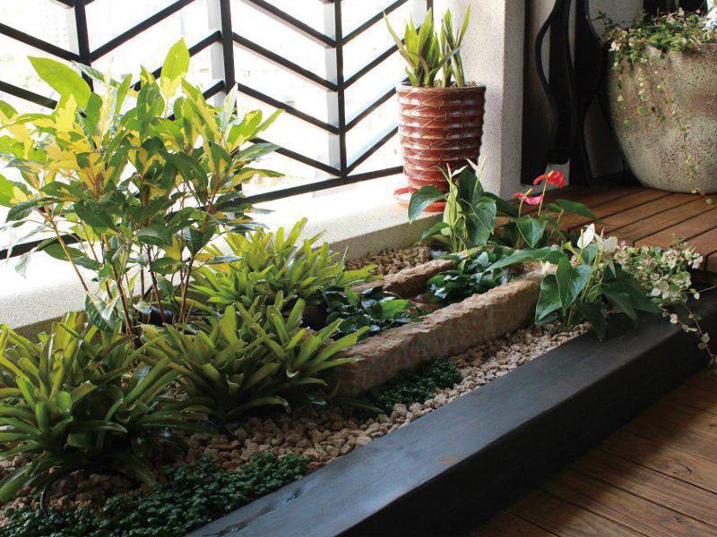打造都市裡的叢林陽台 在家就能森呼吸